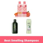 Best Smelling Shampoos: Make Your Hair Smell